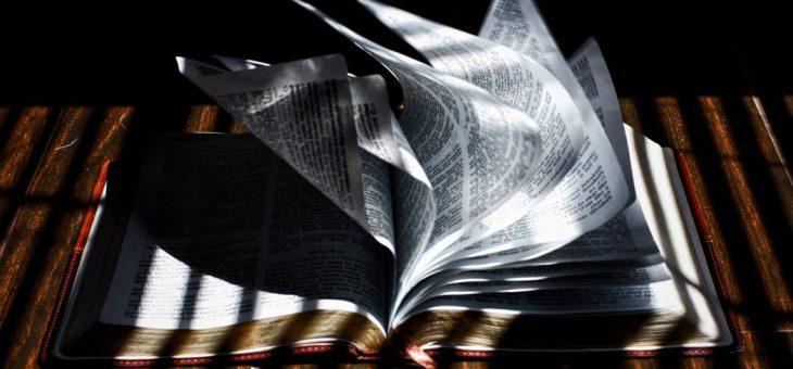 Libri Antichi, che passione!