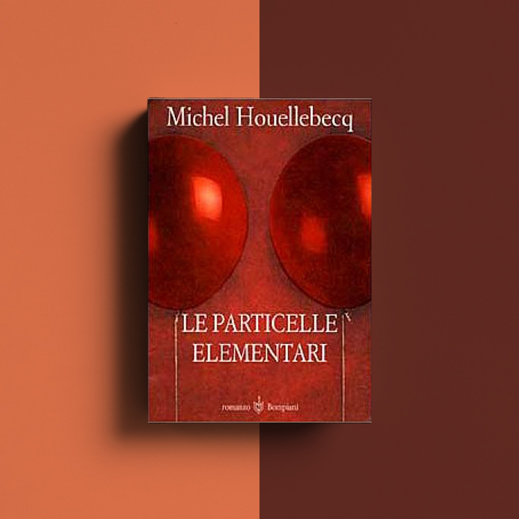 Le particelle elementari  francia